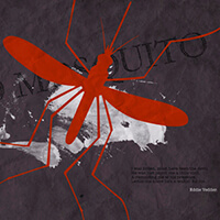 Red mosquito